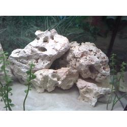 Roca blanca para cíclidos (kg)