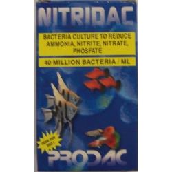 P.NITRIDAC BACTERIAS 250ML