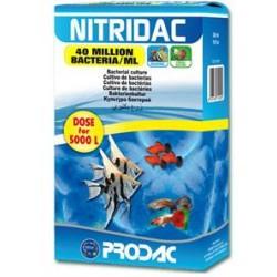 Bacterias Nitridac 30 ml